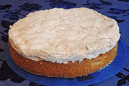 Marillenkuchen mit Vanillehäubchen 1