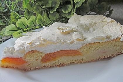 Marillenkuchen mit Vanillehäubchen 5