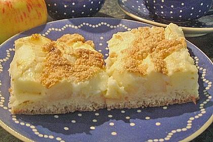 Schneller Apfel - Hefe - Blechkuchen von Laura 2