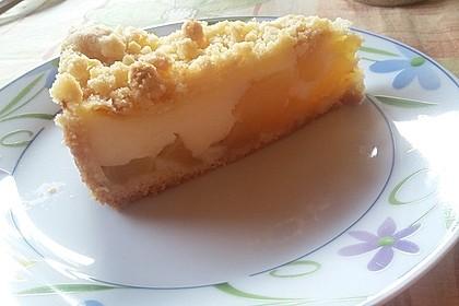 Leichter Apfelkuchen mit Vanillepudding und Streuseln 23