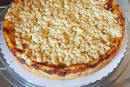 Leichter Apfelkuchen mit Vanillepudding und Streuseln 29