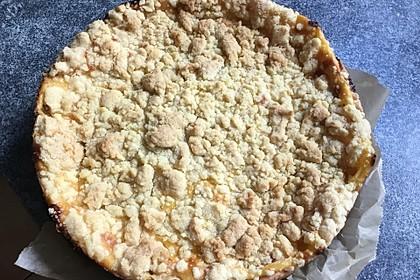 Leichter Apfelkuchen mit Vanillepudding und Streuseln 31