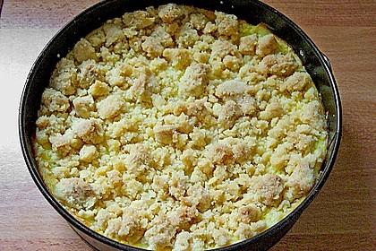 Leichter Apfelkuchen mit Vanillepudding und Streuseln 32