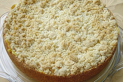 Leichter Apfelkuchen mit Vanillepudding und Streuseln 3