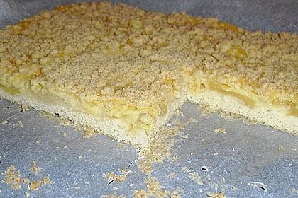 Leichter Apfelkuchen mit Vanillepudding und Streuseln 34