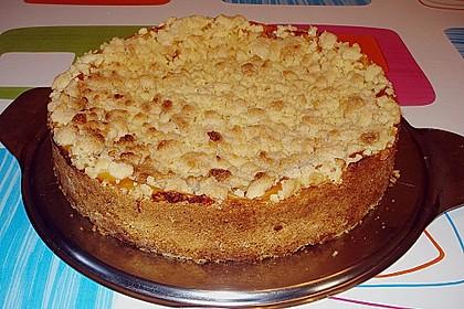 Leichter Apfelkuchen mit Vanillepudding und Streuseln 2