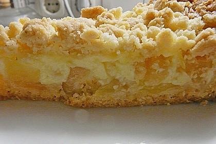 Leichter Apfelkuchen mit Vanillepudding und Streuseln 22