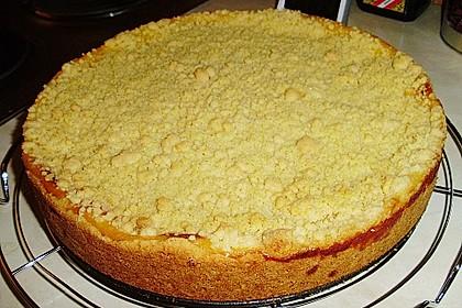 Leichter Apfelkuchen mit Vanillepudding und Streuseln 13