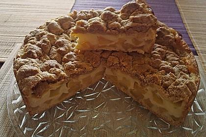 Leichter Apfelkuchen mit Vanillepudding und Streuseln 19