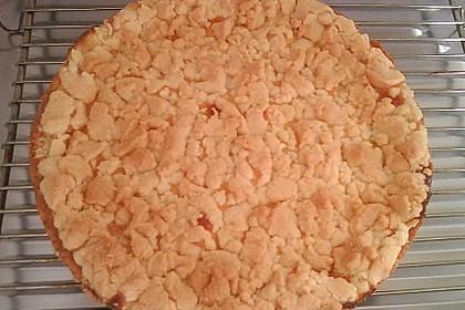 Leichter Apfelkuchen mit Vanillepudding und Streuseln 33
