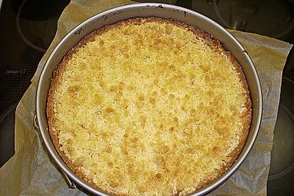 Leichter Apfelkuchen mit Vanillepudding und Streuseln 27
