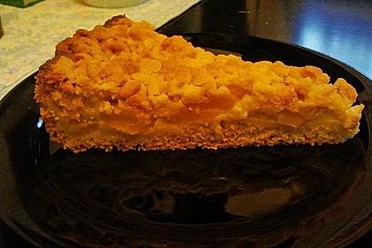 Leichter Apfelkuchen mit Vanillepudding und Streuseln 36