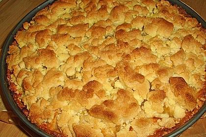 Leichter Apfelkuchen mit Vanillepudding und Streuseln 16