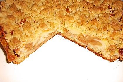 Leichter Apfelkuchen mit Vanillepudding und Streuseln 4