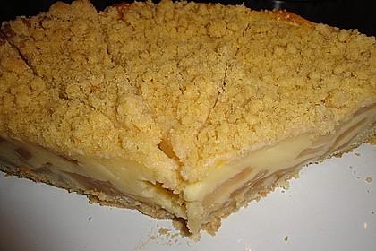 Leichter Apfelkuchen mit Vanillepudding und Streuseln 12