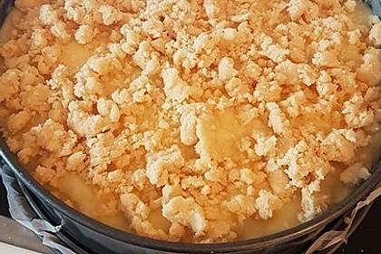 Leichter Apfelkuchen mit Vanillepudding und Streuseln 43