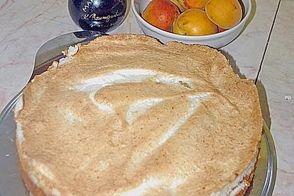 Marillenkuchen mit Kokos - Baiserhaube 2