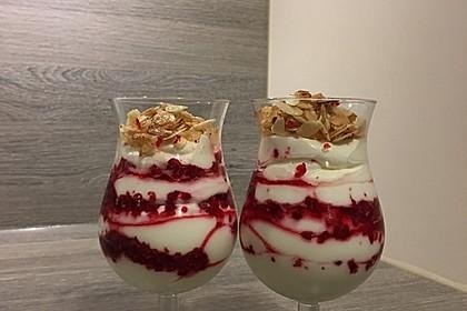 Schnelles Himbeer Dessert 25