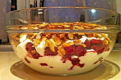 Schnelles Himbeer Dessert 29