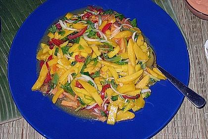 Feuriger Mangosalat 10