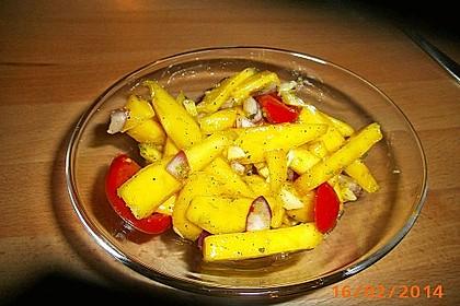 Feuriger Mangosalat 18