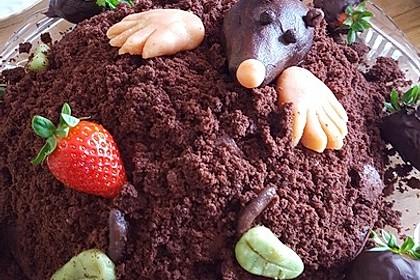 Maulwurfkuchen (Bild)