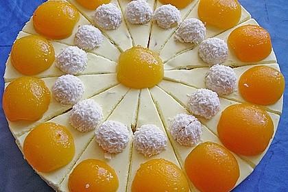 Aprikosen - Frischkäse - Kuchen (Bild)