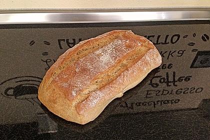 Ciabatta (1 großes od. 2 kleine Brote) 17