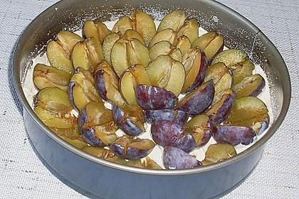 Evis schneller Zwetschgenkuchen 17