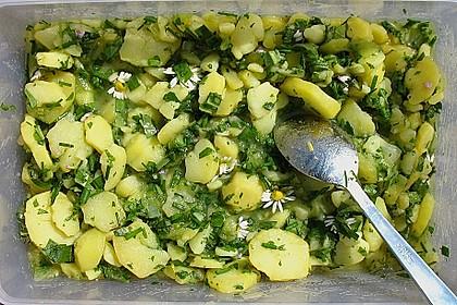 Kartoffelsalat mit Gänseblümchen und Löwenzahn 1