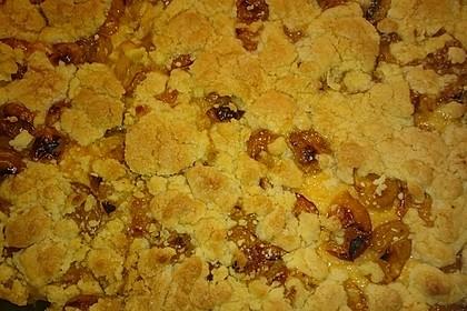 Obst - Pudding - Hefekuchen mit Vanillestreuseln 8