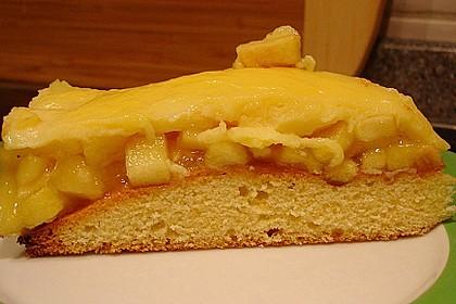 Apfeltorte mit Pudding - Eierlikör - Guss 37