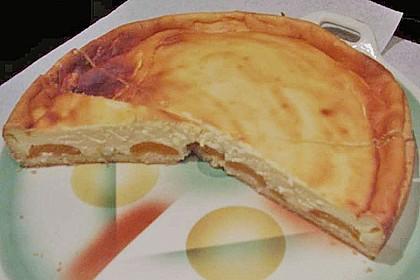 Aprikosen - Sahnerahm - Kuchen 13