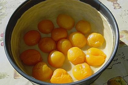 Aprikosen - Sahnerahm - Kuchen 22