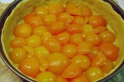Aprikosen - Sahnerahm - Kuchen 20