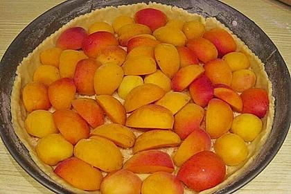 Aprikosen - Sahnerahm - Kuchen 21