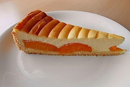 Aprikosen - Sahnerahm - Kuchen 1
