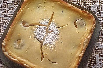Aprikosen - Sahnerahm - Kuchen 16