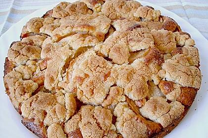 Apfelkuchen mit Butterstreuseln 35