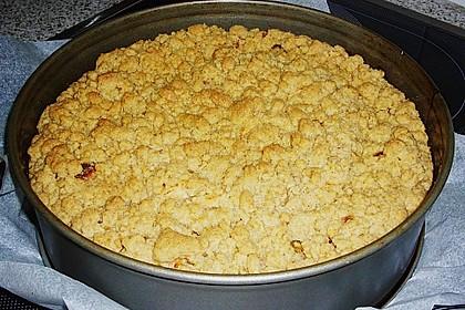Apfelkuchen mit Butterstreuseln 62