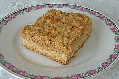 Apfelkuchen mit Butterstreuseln 22
