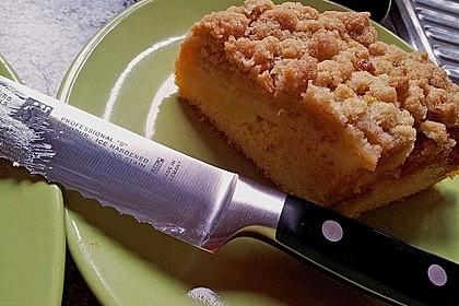 Apfelkuchen mit Butterstreuseln 58