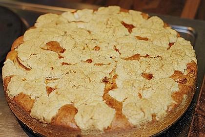 Apfelkuchen mit Butterstreuseln 40