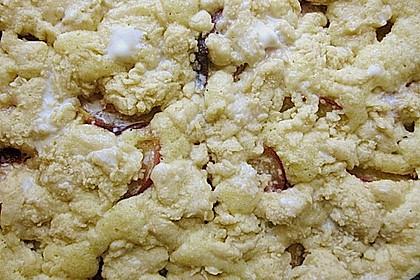 Schneller Nektarinen - Kuchen mit Streuseln 2