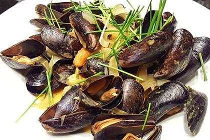 Miesmuscheln in Curry - Weißweinsahne 5