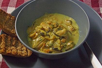 Miesmuscheln in Curry - Weißweinsahne 8