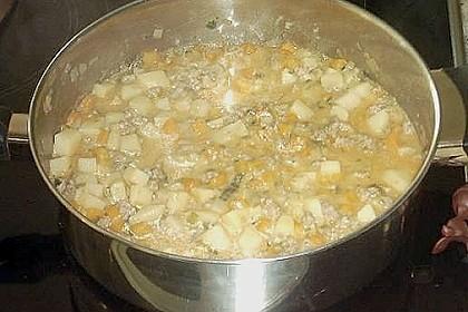 Hackfleisch - Kartoffeltopf 21
