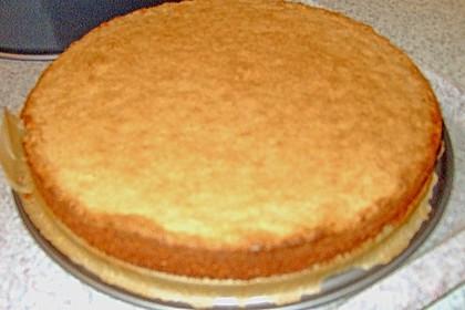 Daim - Torte 12