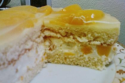 Dessert - Kuchen / Torte aus Quark, Joghurt und Obst auf 3-schichtigem Biskuitboden 7