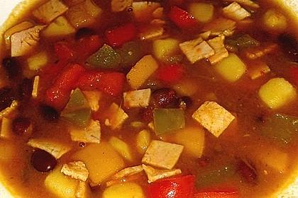 Illes Balkanfeuer - eine wärmende Suppe mit Rotwein 4